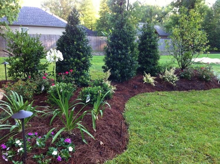 Lawn Care, Baton Rouge, LA - Greenscape Design