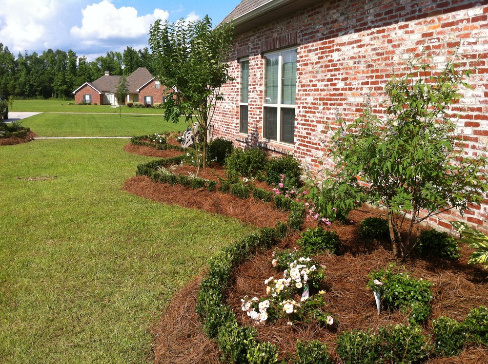 Front Yard Landscaping, Greenscape Design - Baton Rouge, LA