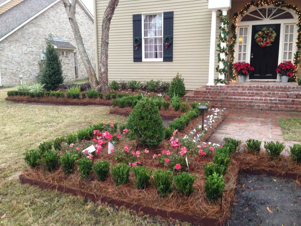Front Yard Landscaping with Flowers, Greenscape Design - Baton Rouge, LA