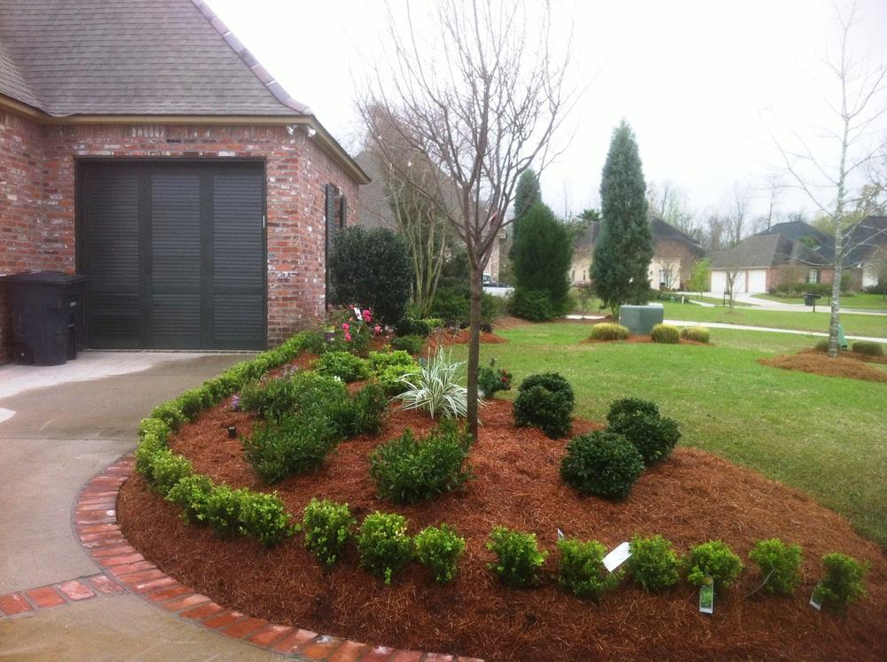 Driveway Landscaping, Greenscape Design - Baton Rouge, LA
