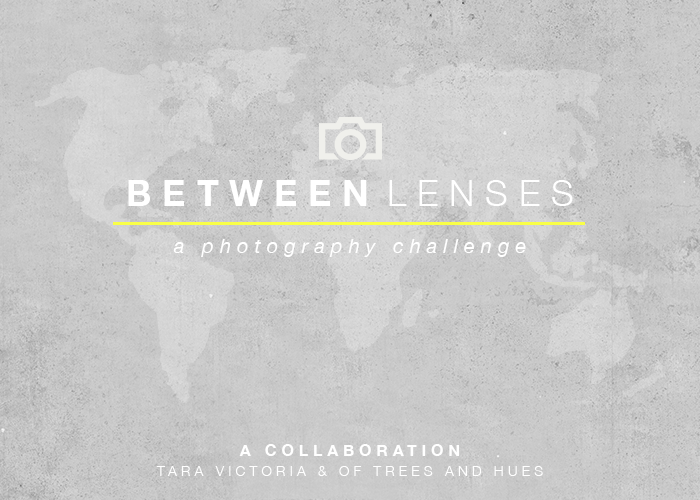 BetweenLenses700x500 (1).png