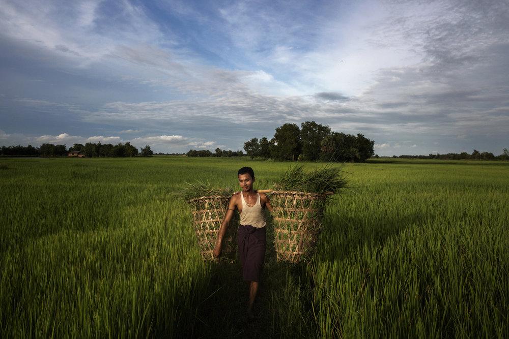 13_12_Burma WUA.jpg