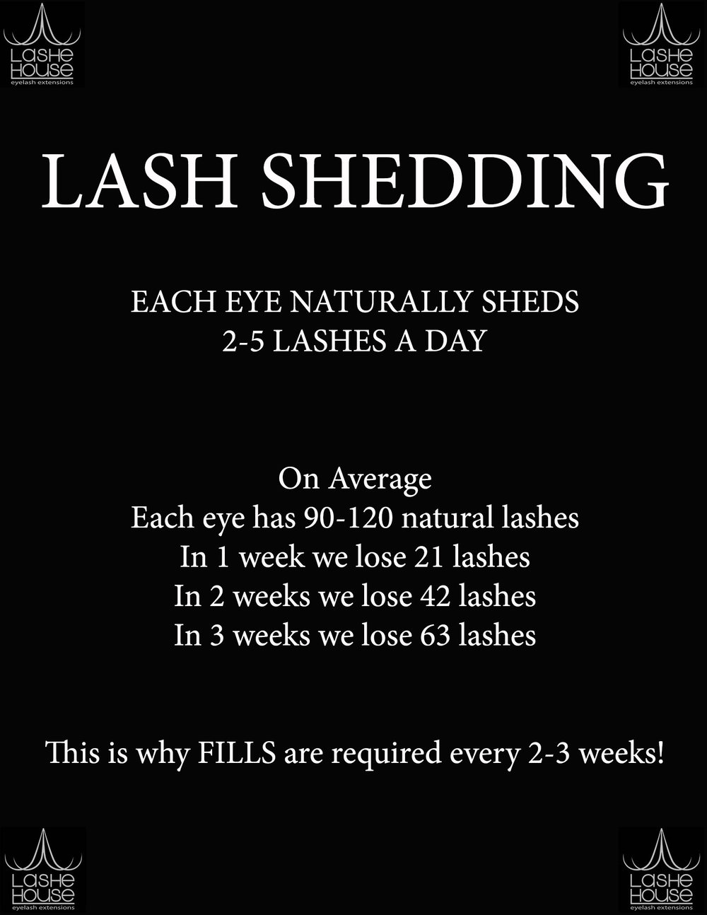 lash shedding.jpg