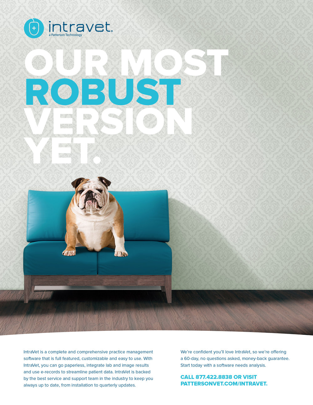 Intravet Ad Campaign