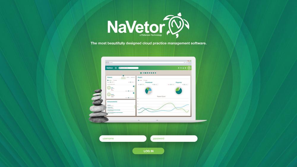 NaVetor Login Portal Design