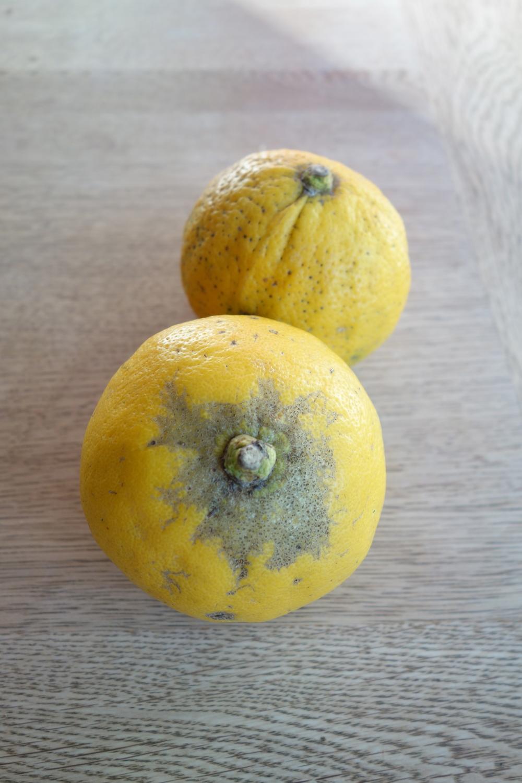 Deux citrons bergamote