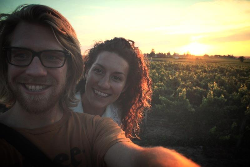 sunset-vines.jpg