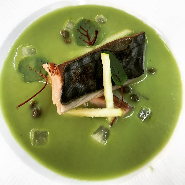 Pickled mackerel, chilled sorrel soup, kohlrabi and apple (May).PNG