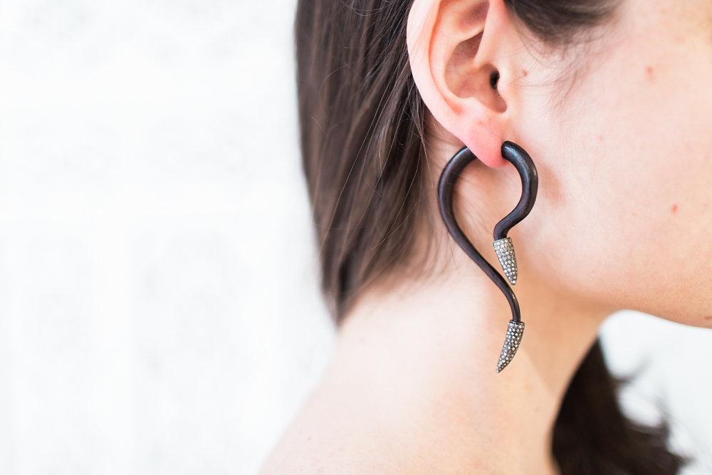 luxury earrings.jpg