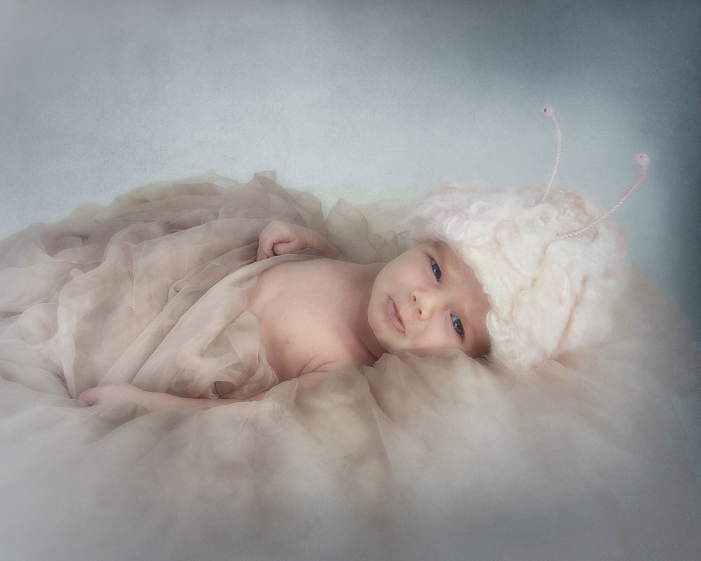 regina-newborn-photographers-free-lense-photo-003.jpg