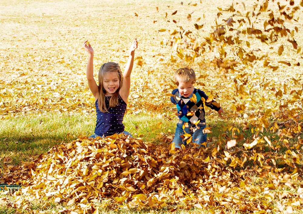 gorgeous-fall-photos-free-lense-photo-072.jpg