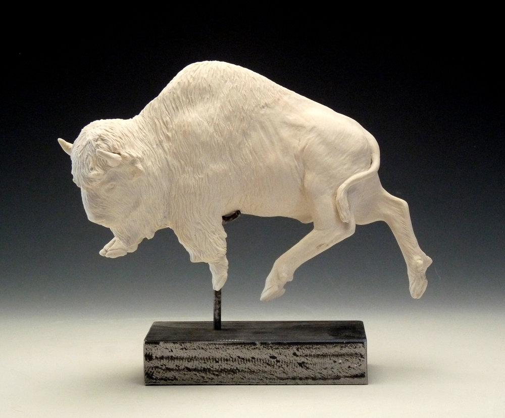 Buffalo cropped.jpg