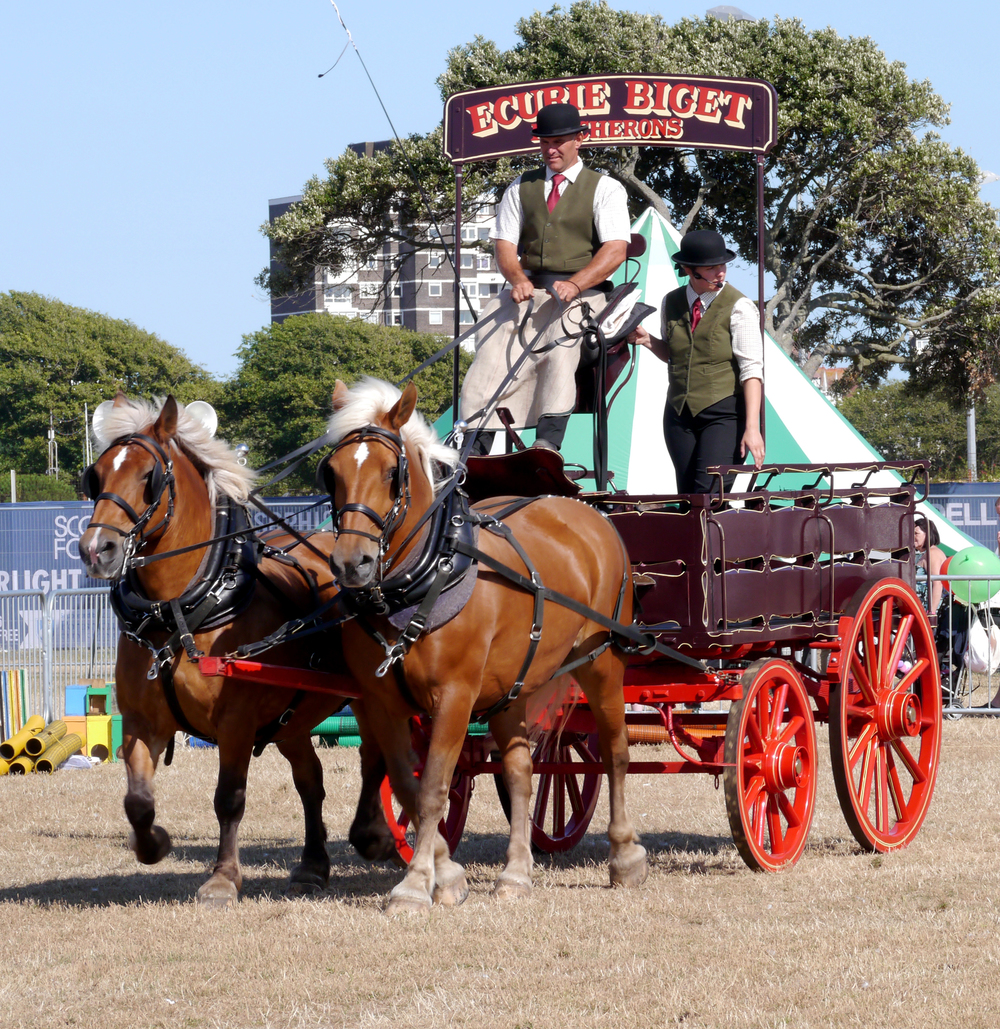 Heavy Horse Display at Southsea Show