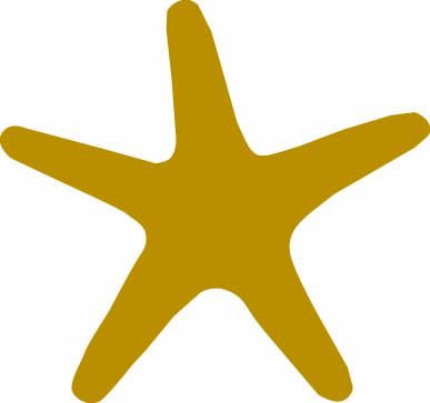 STAR .jpg