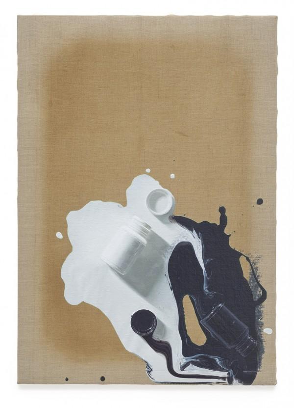 contemporaryartdaily :      Paul Sietsema at Museum of Contemporary Art, Chicago