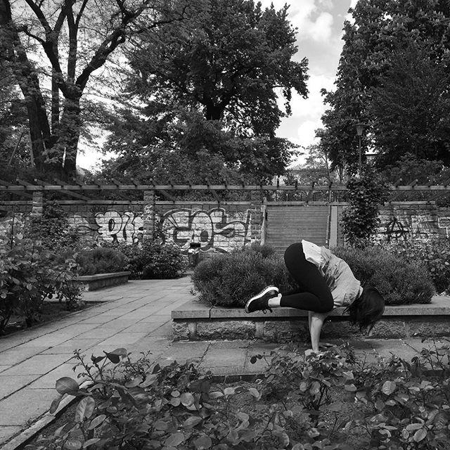 Blending into the surroundings as a crow 👀Yesterday was Berlin's first full summer day, we kind of skipped spring again this year, though. It felt so good to leave the house without a jacket! I hereby officially declare that the outdoor season has started 😝 Yoga, boxing, fitness workout, SUP! Here we go!!!! / 🇩🇪 / Mit der Landschaft als Krähe verschmelzen 🤣 Gestern gab es gefühlt den ersten Sommertag in Berlin, obwohl man sagen muss, dass wir es mal wieder geschafft haben, den Frühling auszulassen. Es war so schön, ohne Jacke draußen zu sein! Ich eröffne hiermit offiziell die Ourdoorsaison 😋Yoga, Boxen, Fitness Training, SUP! Los geht's!!!!