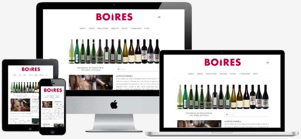 AGENCE BOIRES         — VIEW PROJECT ➤