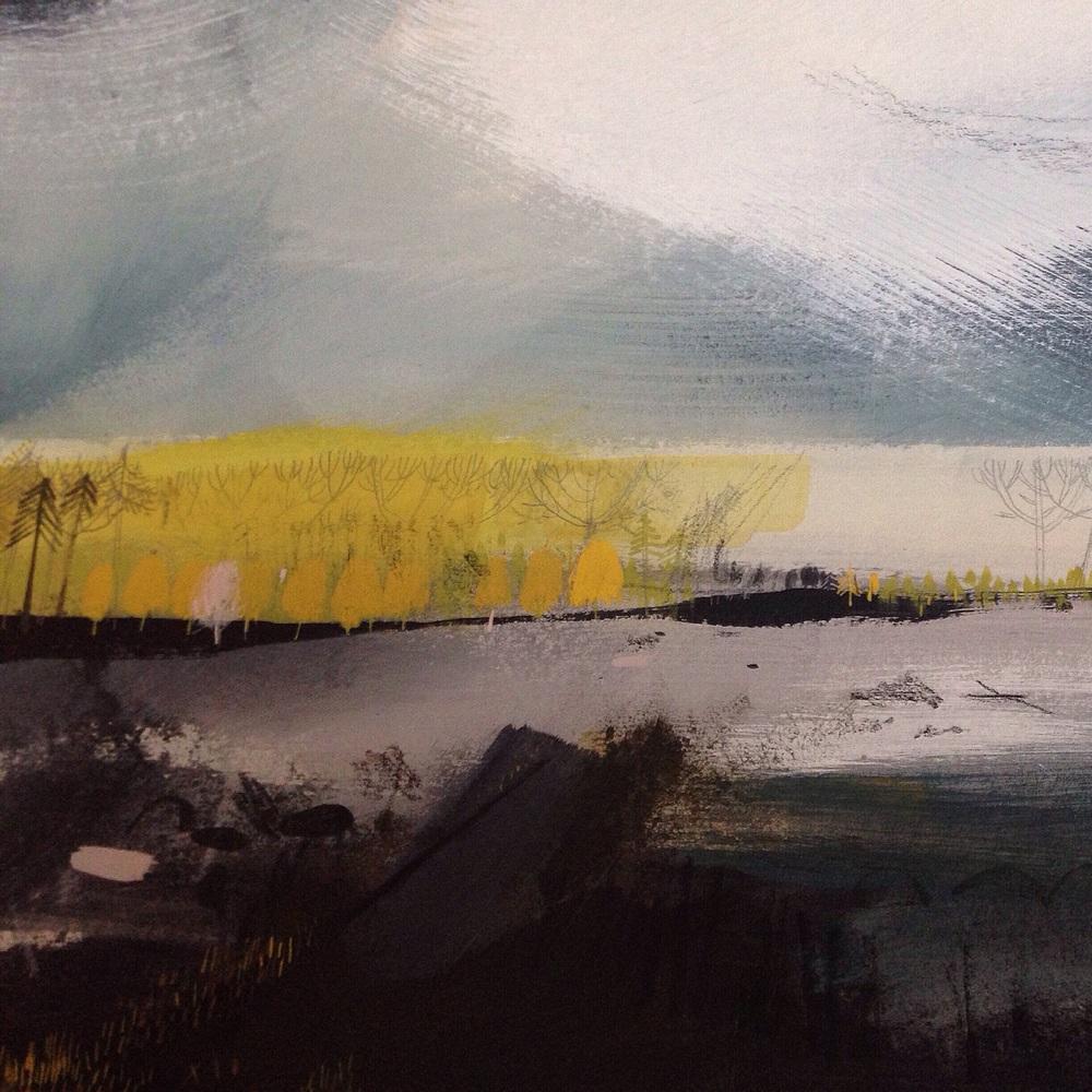 Delamere Wetlands