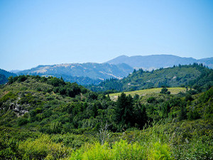 Mayacamas Ranch Photo Gallery