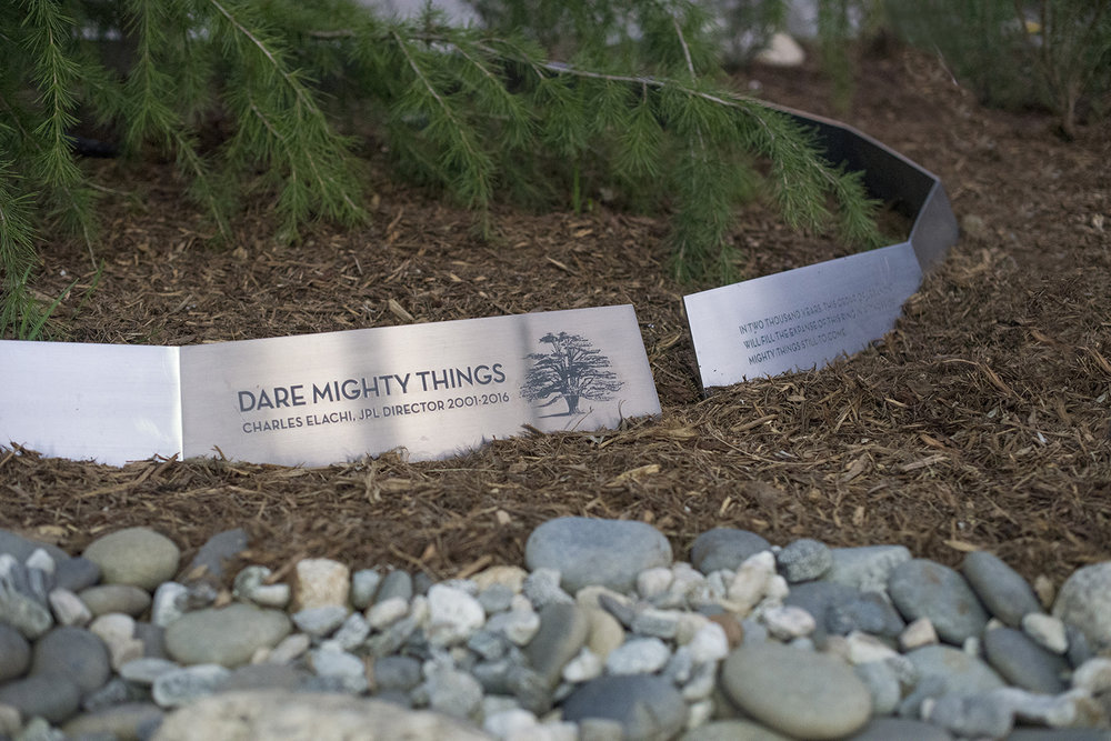 Elachi's Tree, JPL