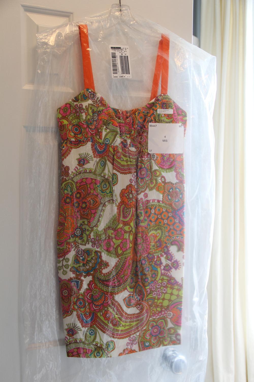 Dress in Hanging Bag.jpg