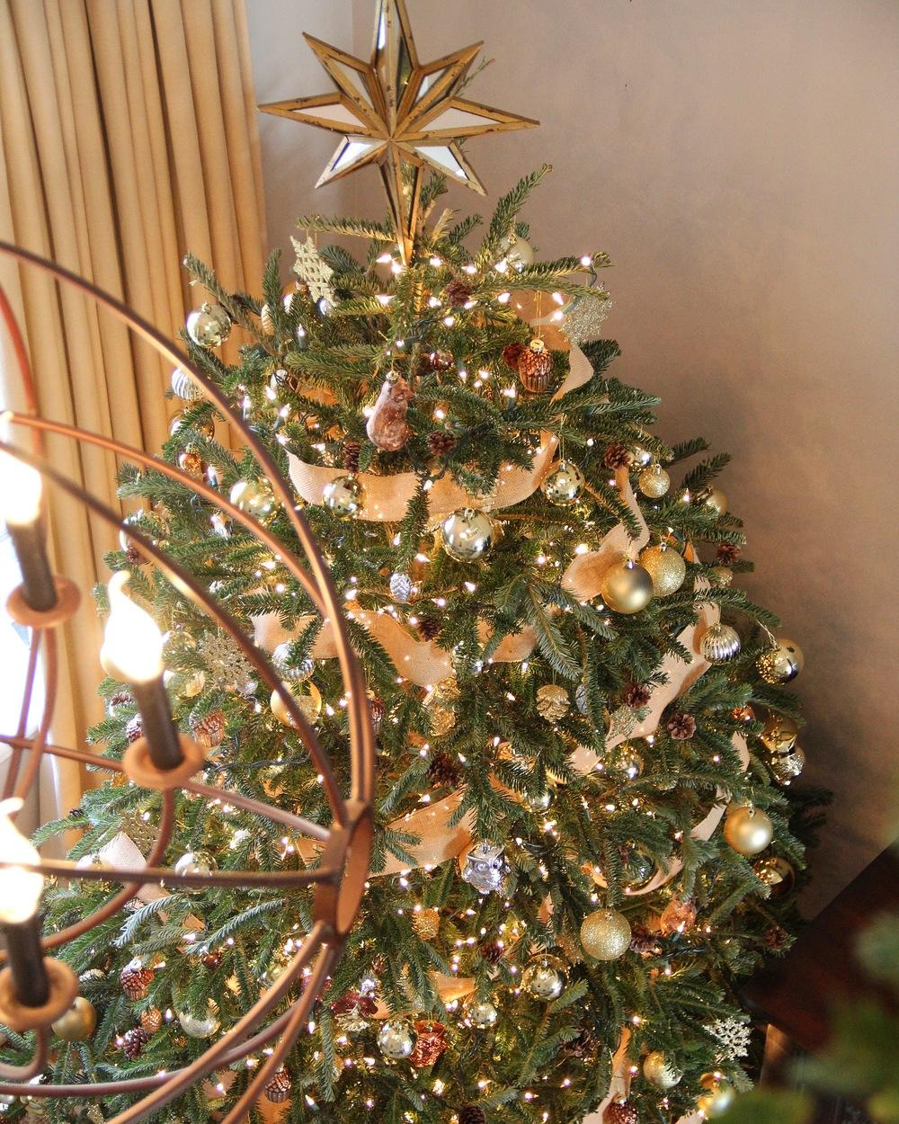 Redefining Domestics Christmas Tree.JPG