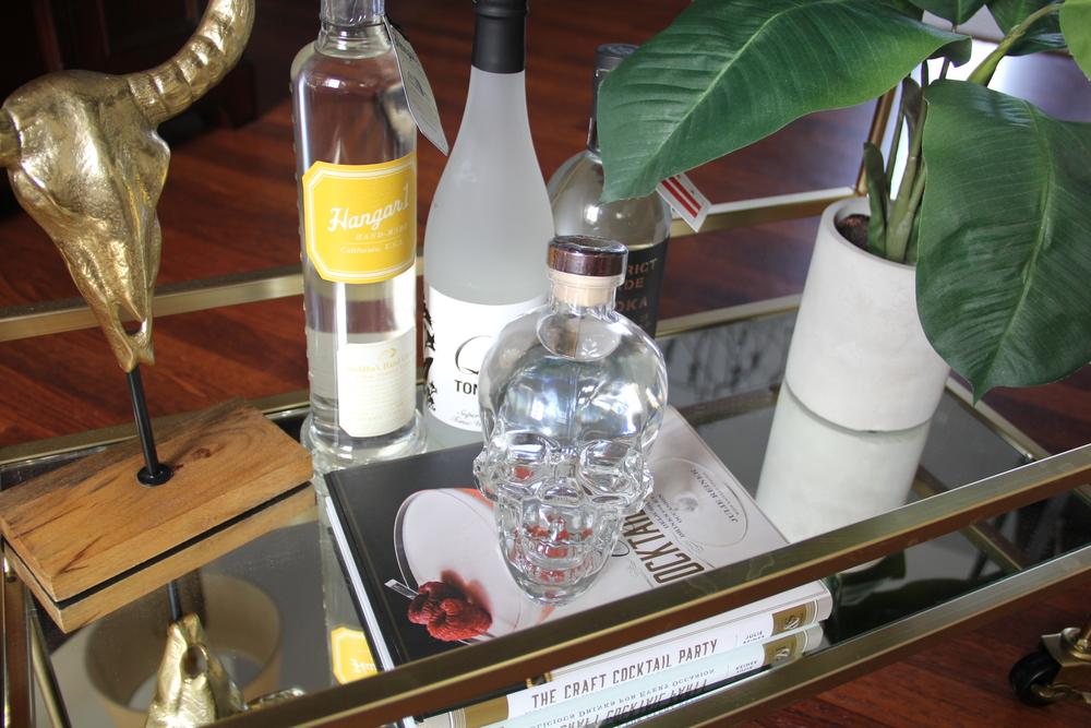 Rolling Stones Skull Vodka 3.JPG