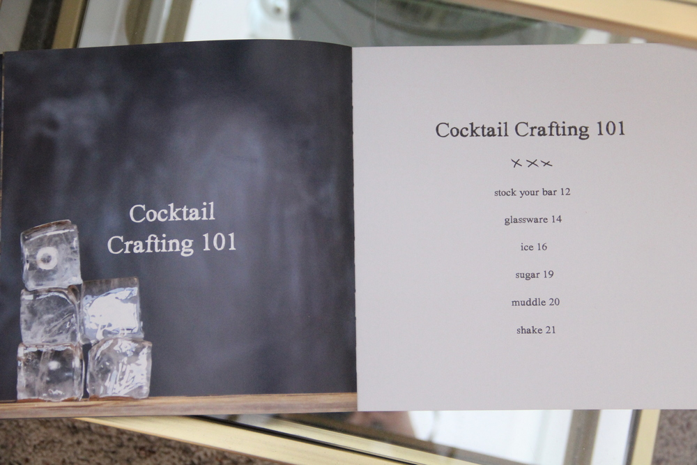 Shake Crafting Cocktails 101.JPG