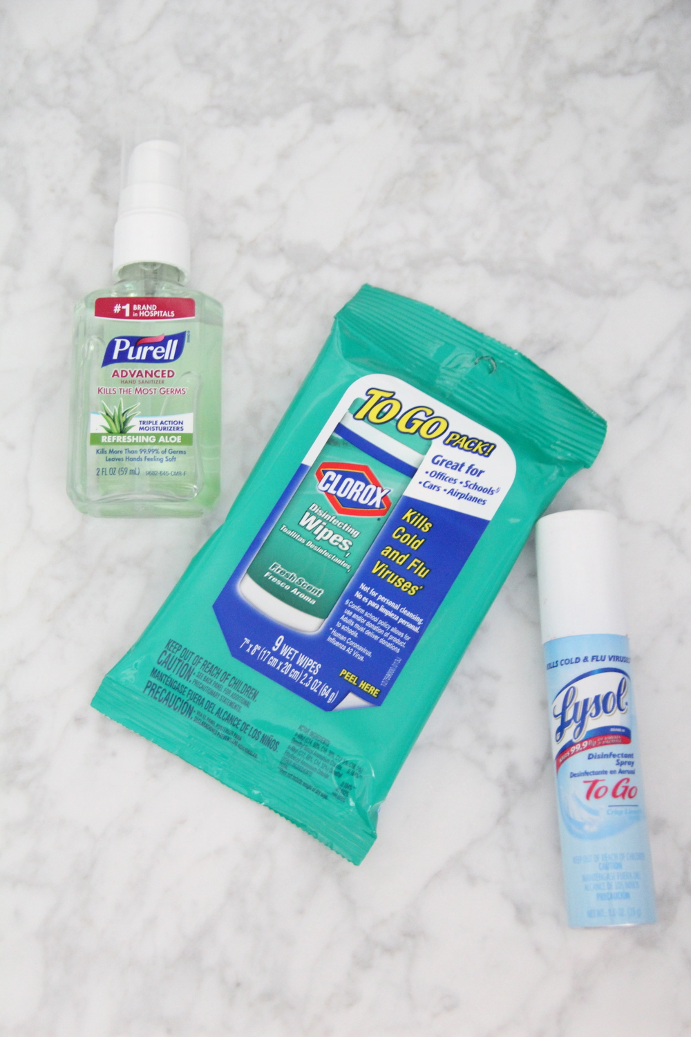 Travel Clorox and Lysol.JPG