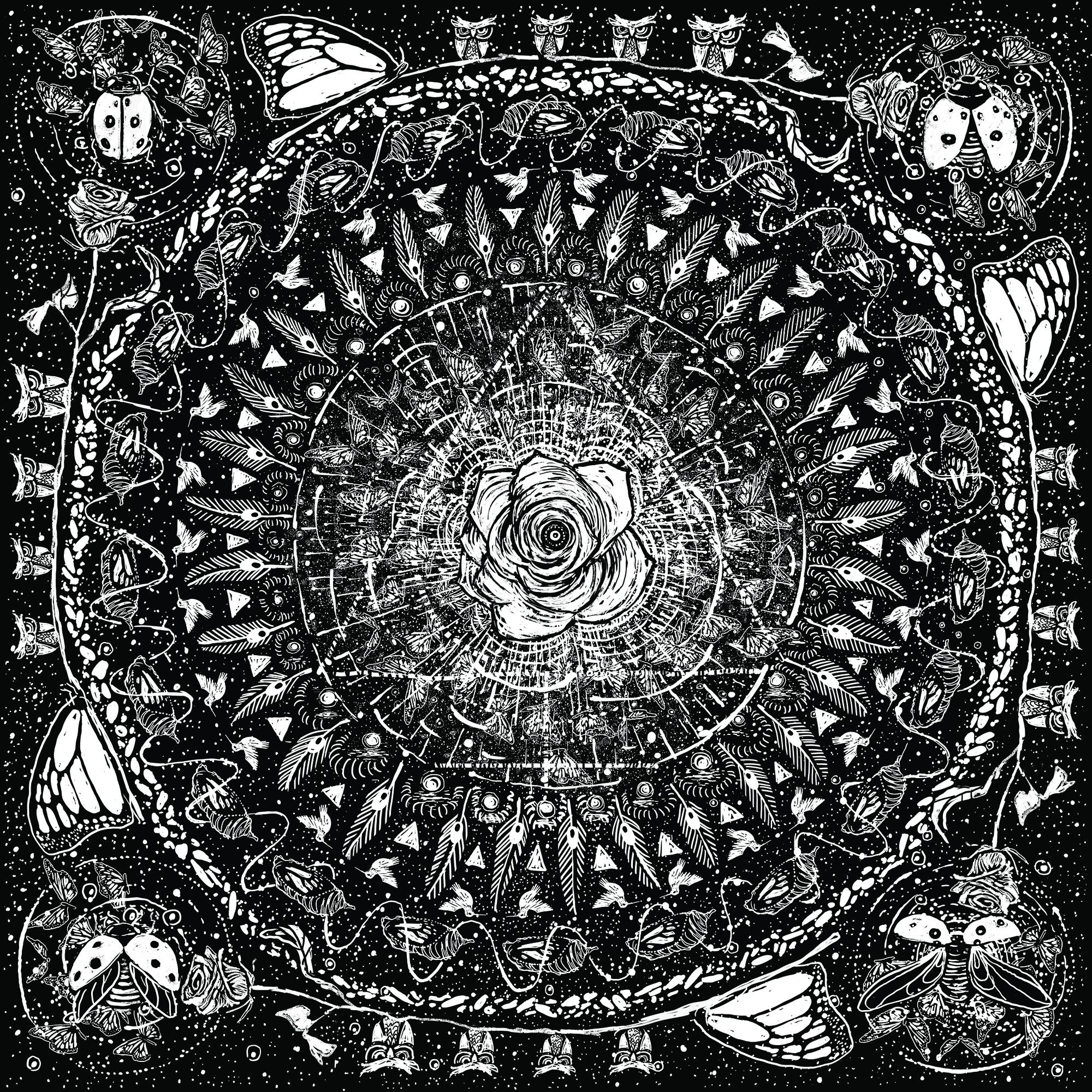 Color art mandala wonders - Fragilitymandala Jpg 3 Three Mandalas