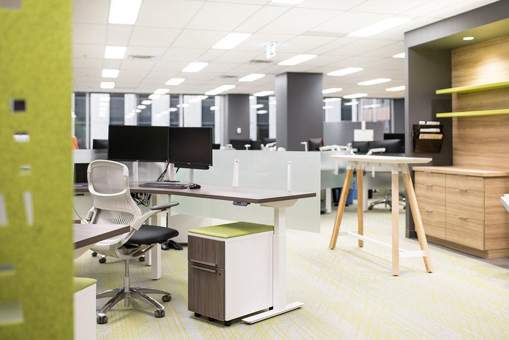 Office-Design-NAL-4.jpg