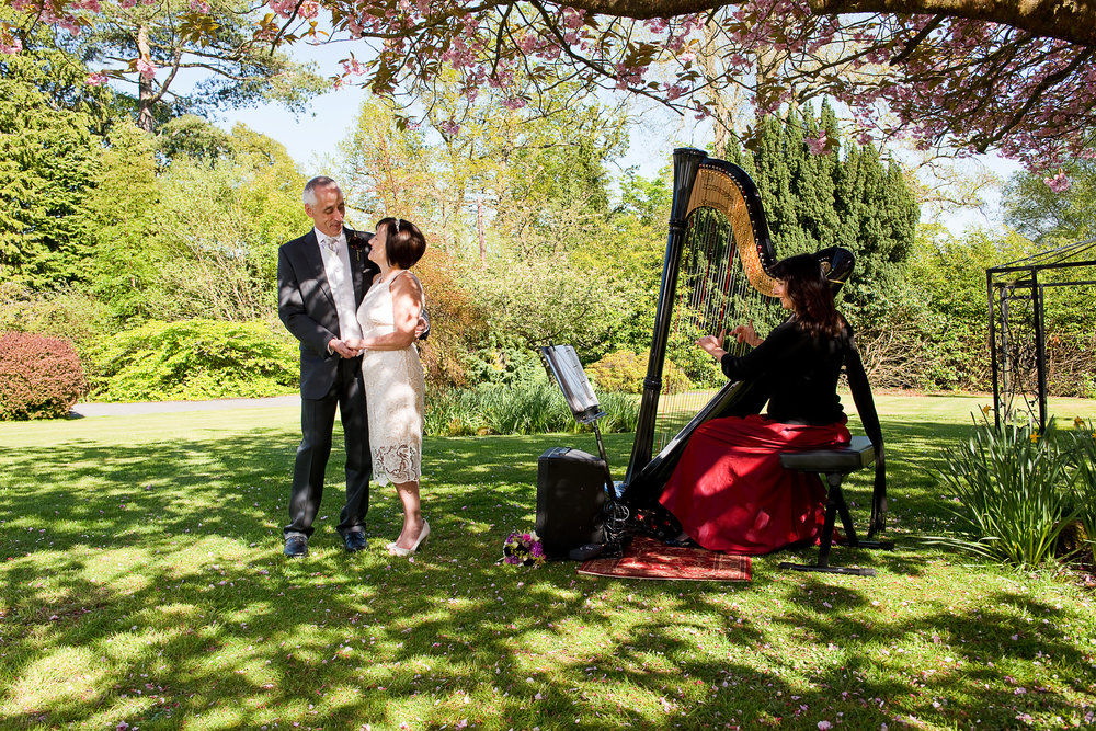Here  Oona Linnett harpist  plays for a wedding at Plas Hafod