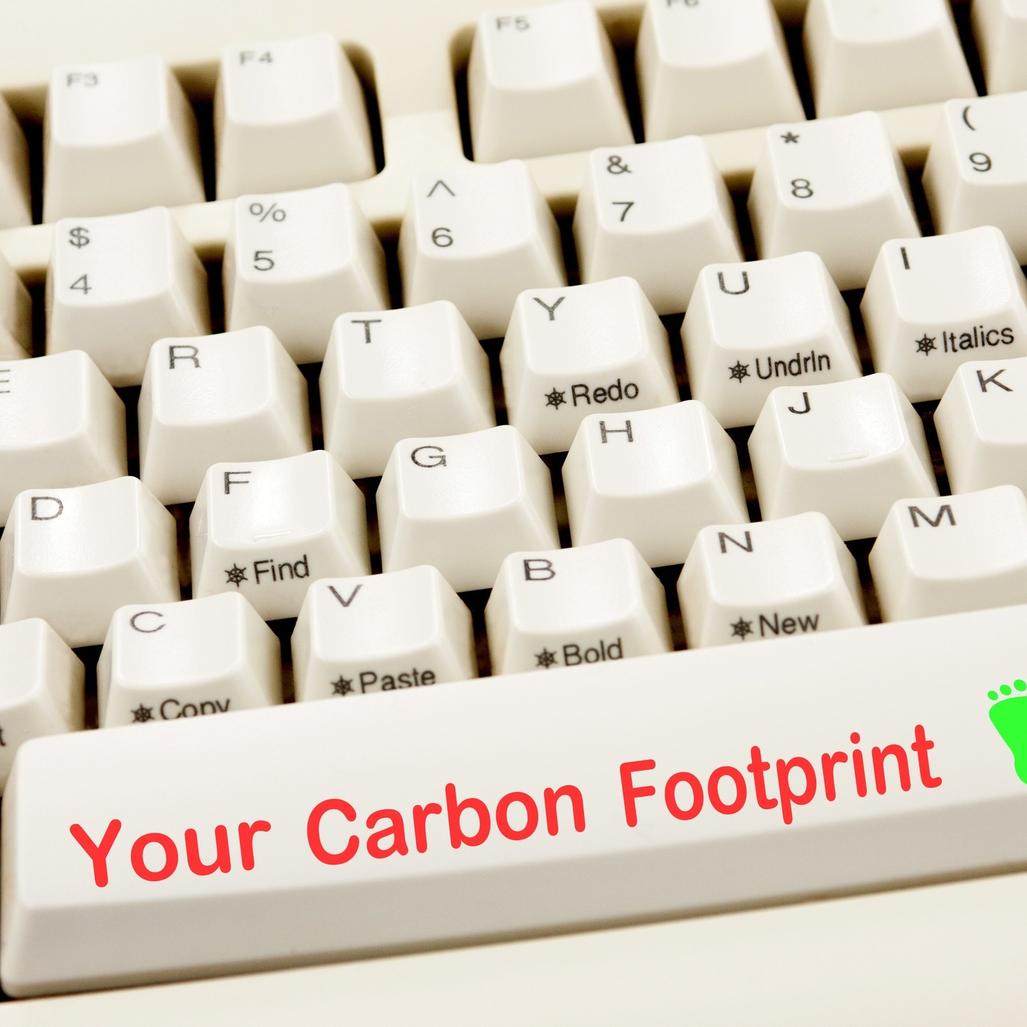 "thumbnail An ""Internet Footprint""? Greening Your Website and Data Management"