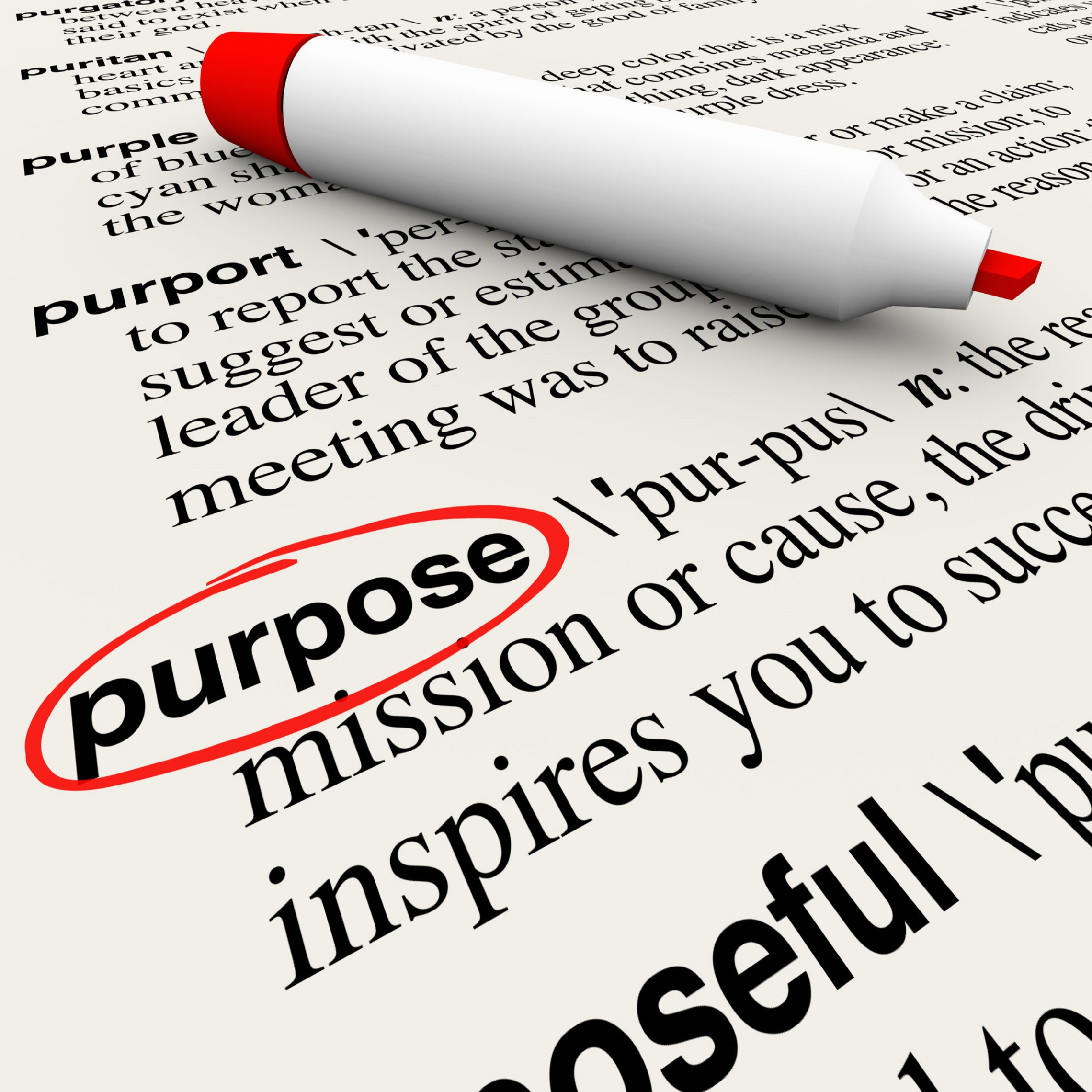 thumbnail A Purpose-driven Mission Boosts Employee Well Being