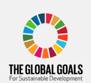 thumbnail SDGs: Our global moon-shot moment for businesses