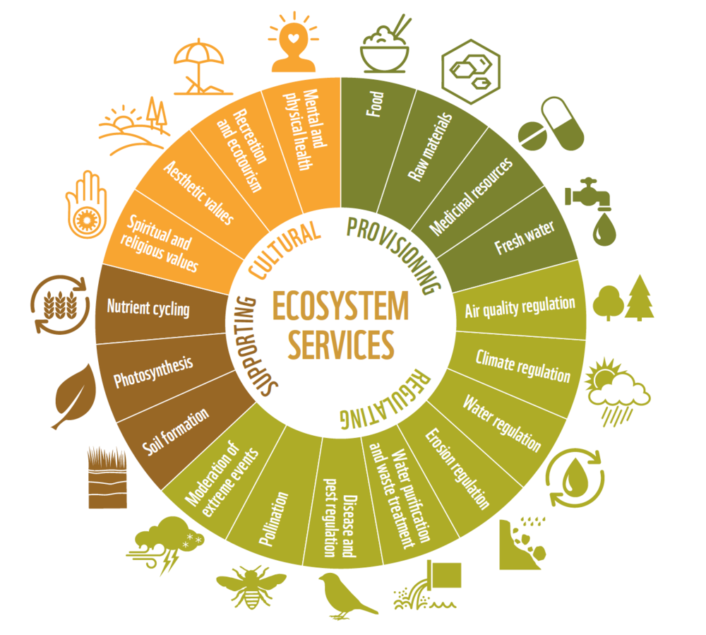 (Ecosystem Services and Biodiversity, European Commission, May 2015)