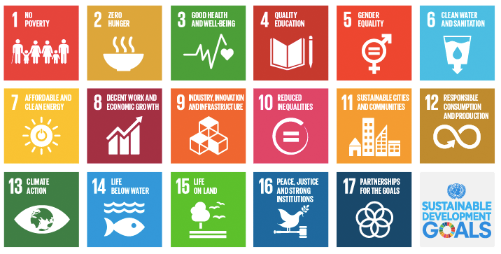 thumbnail Let's Not Greenwash the SDGs