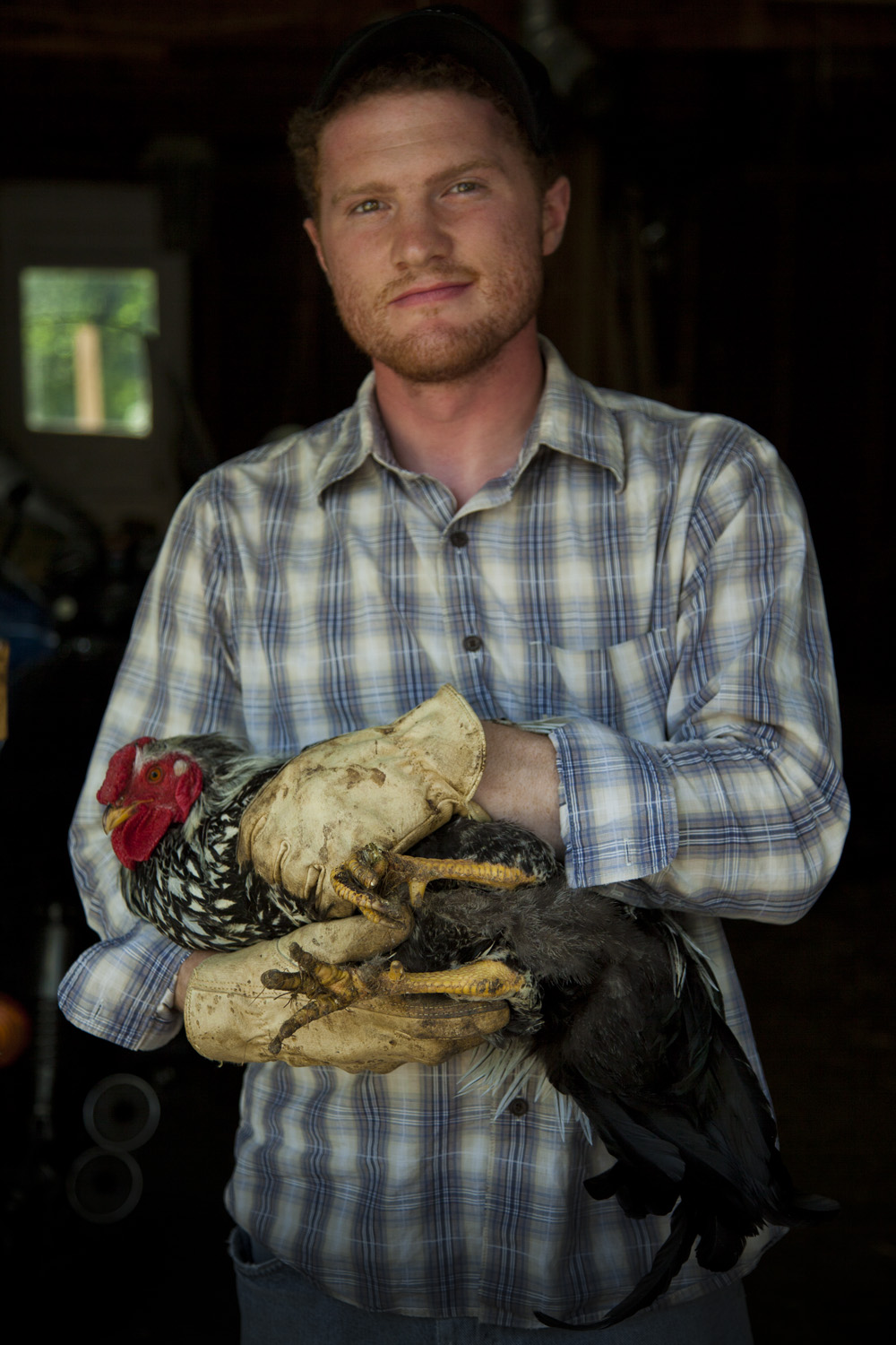 David, Chicken Farmer, Detroit 2014