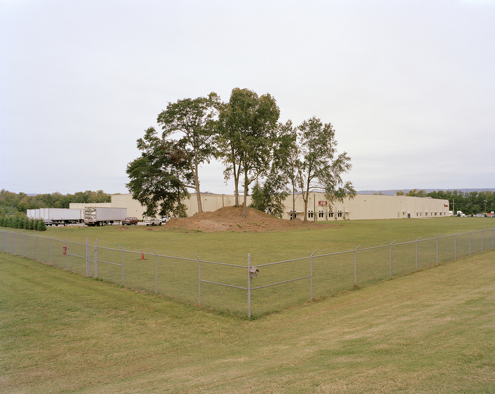 Chickamunga Mound, Cattanooga, TN, 2011