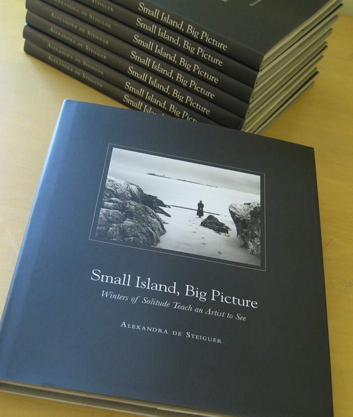Small Island, Big Picture  Monograph by Alexandra de Steiguer