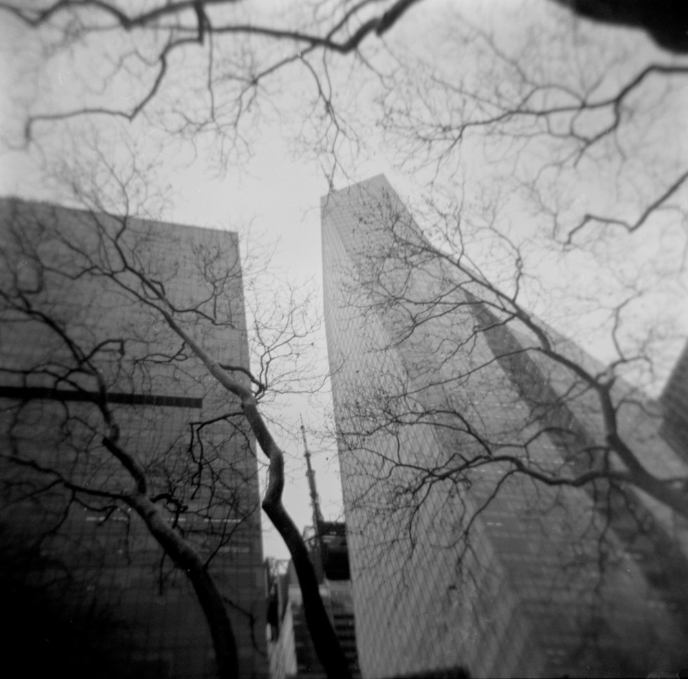 Buildings & Trees