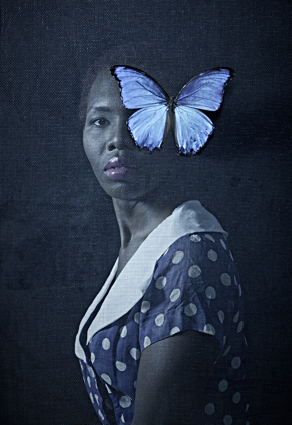 "Butterfly 6 x 9"", signed and numbered edition of 5 Archival inkjet print $95"