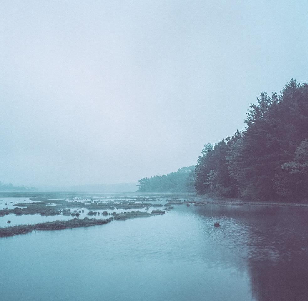 Fog Marsh , Mark Yaggie