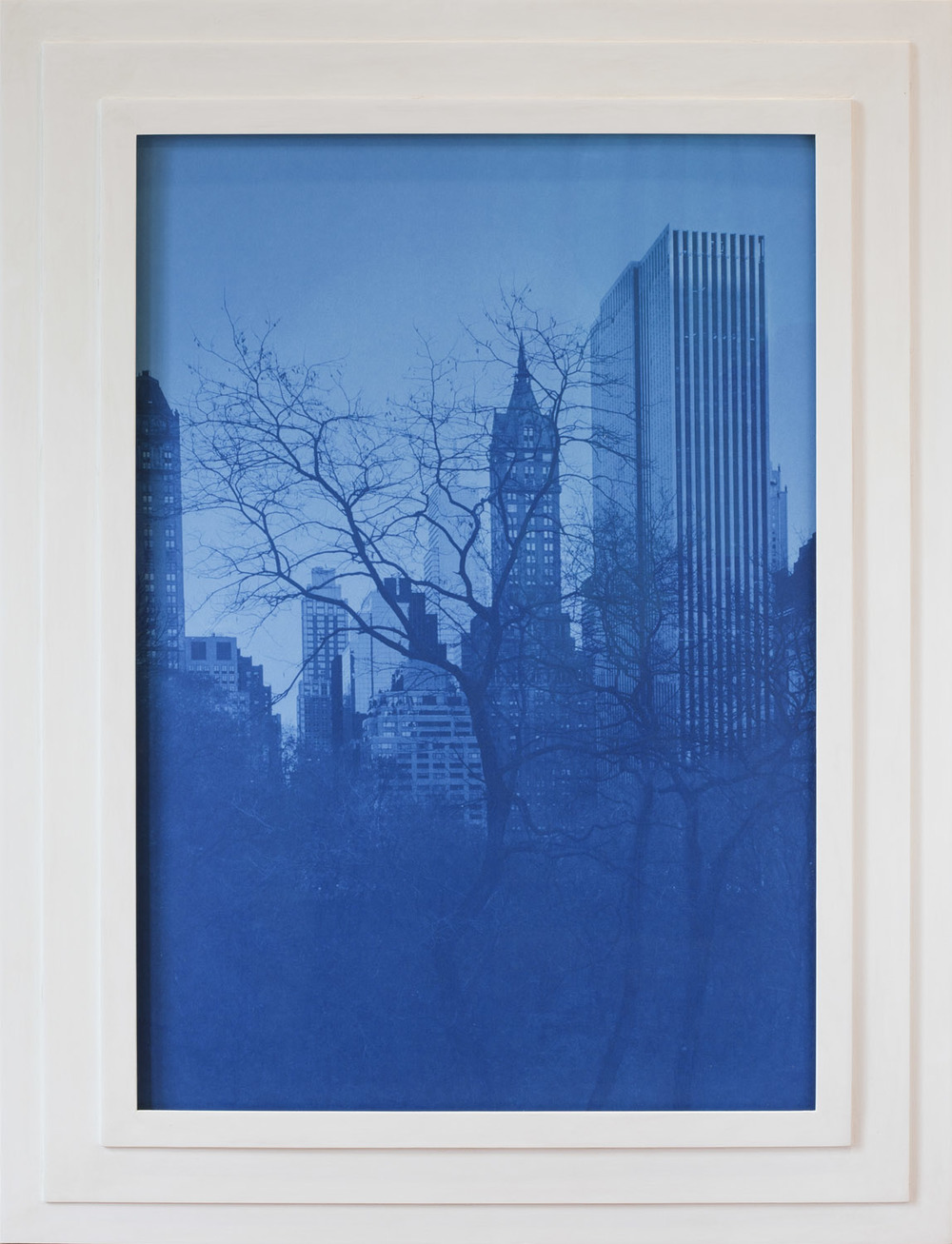 Against Nature  (cyanotype in artist-made frame),  Jefferson Hayman