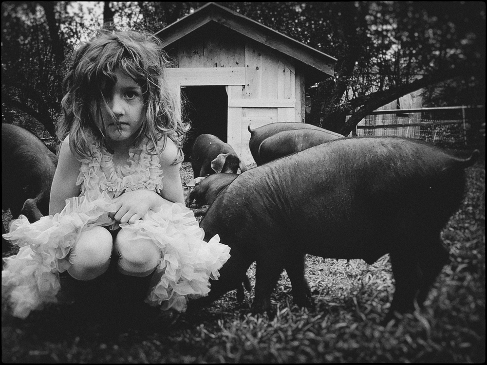 Vera and the Pigs  from the series  Wild Garden of Childhood,   Kathryn Oliver