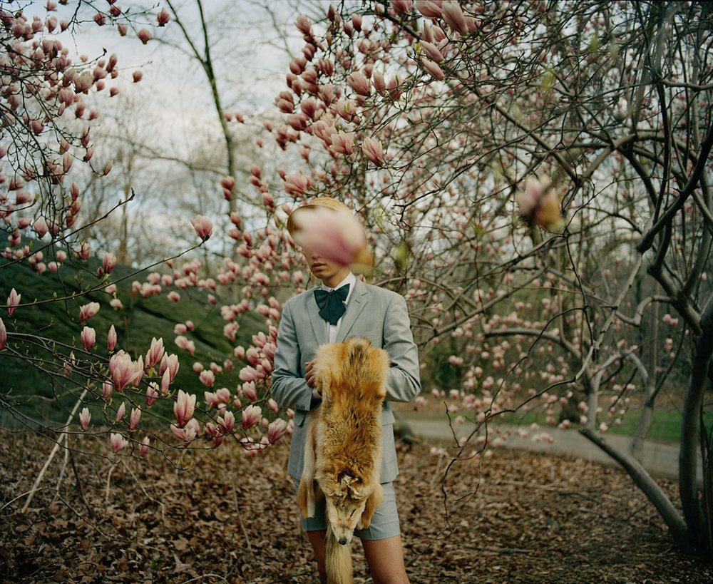 Untitled from the series Our Friendship Went Into the Woods, Sarah Wilmer