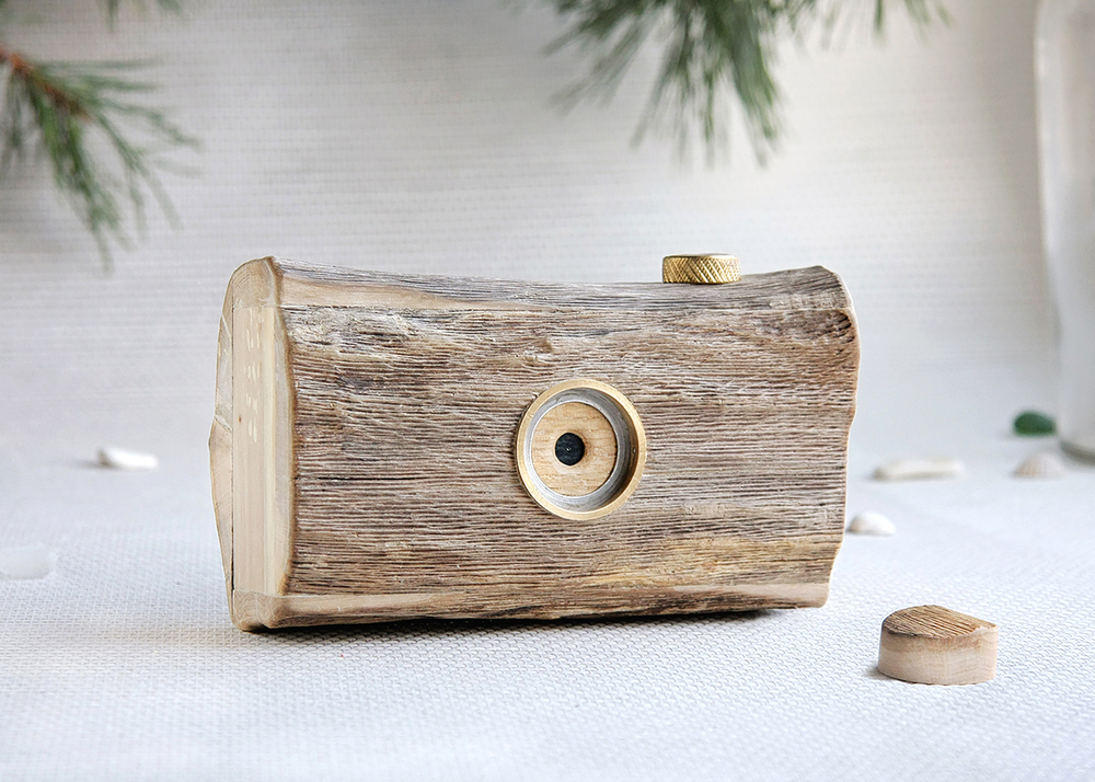 Pinhole camera made from driftwood