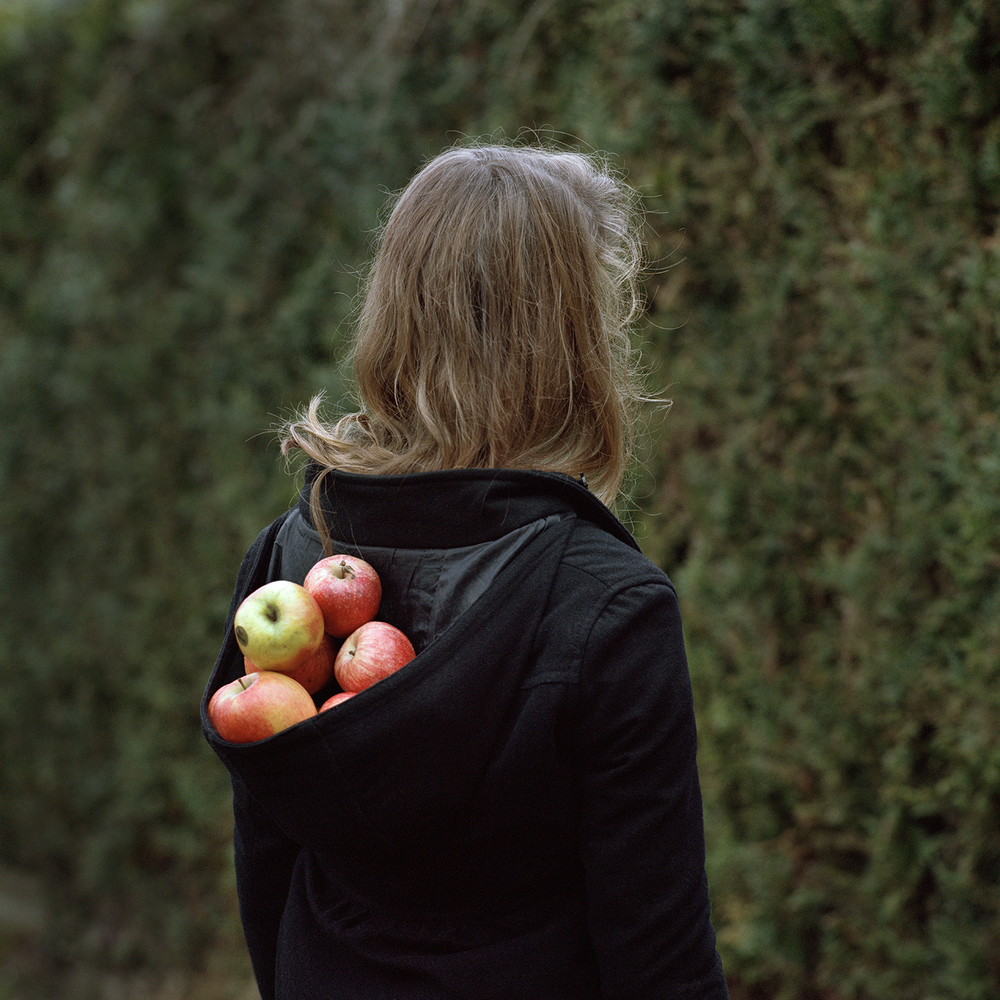 Apples from the series Nesting in the Wolf Tree, Alexandra Serrano