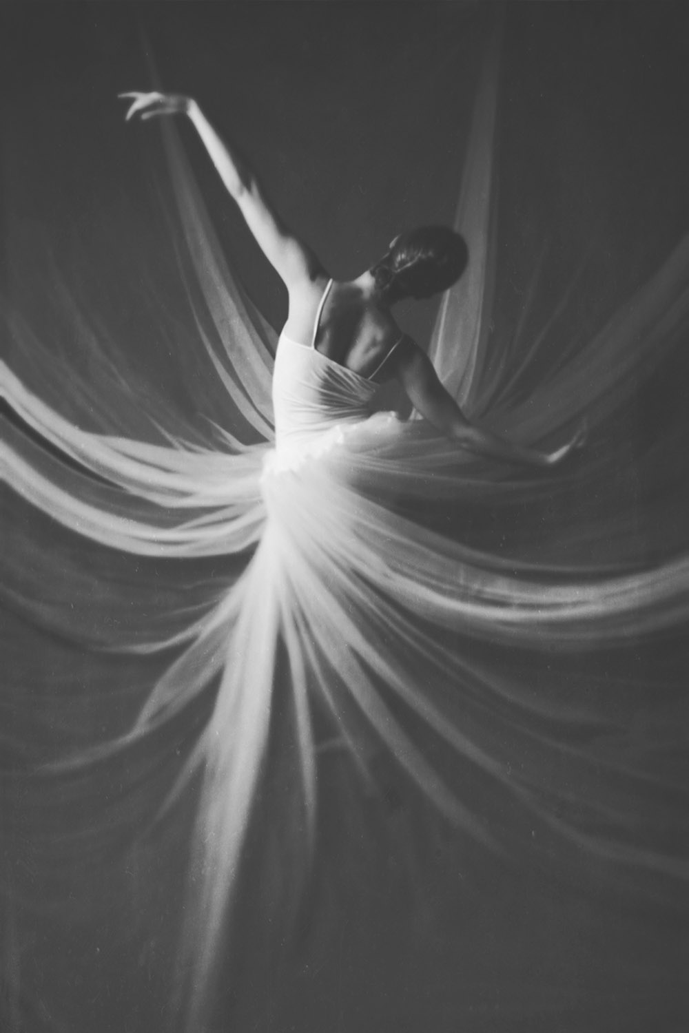 Be Set Free Josephine Cardin 6 x 9, Edition of 5, signed and numbered Archival inkjet print