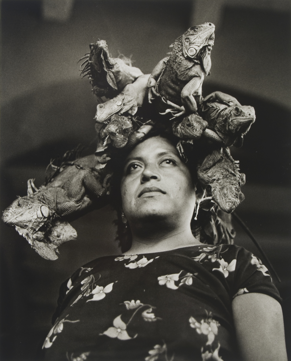 Graciela Iturbide (Mexican, b. 1942), Notre-Dame des Iguanes, Juchitàn, Oaxaca, 1979; 2007:337  Graciela Iturbide is famous for her pictures of Mexico, particularly its indigenous population, though later projects have taken her to India and the American South in her exploration of modern culture. In particular she is known for her master work  Juchitán of Women , a decade long project begun in 1979 when artist Francisco Toledo invited a group including Iturbide to visit Juchitán, a small town in southern Mexico's Tehuantepec Isthmus. This Zapotec Indian town had a distinct culture and way of life, notable for the dominance of women in commercial and political spheres.